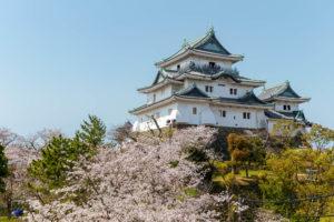 和歌山でよく当たる人気の占い14選!おすすめ占い師や口コミ評判もご紹介!