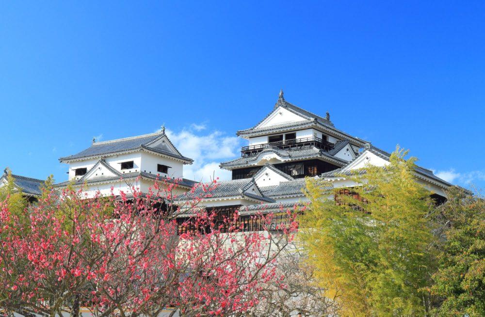 愛媛の松山で当たる占いを探していたら見つかったのが→これ!【おすすめ占い14選】