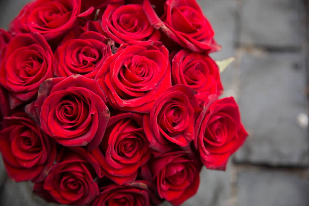 バラの花言葉